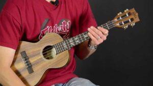 Ukelele o Guitarra: Diferencias